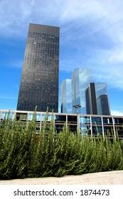 Skyscrapers in daylight