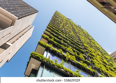 Skyscrapers with flowers and vegetation along balconies.