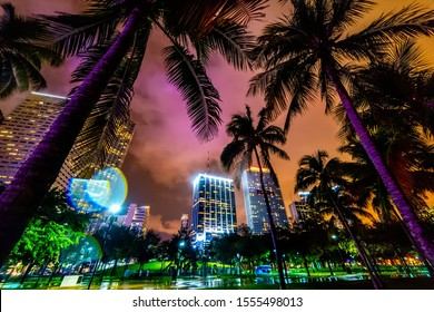Skyscrapers and palm trees in Miami Bayfront park, USA