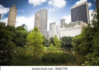 Skyscrapers rising above the trees from Central Park, great contrast between the busy city life and the beauty of nature.