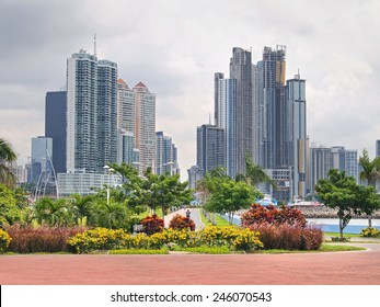 Skyscrapers with tropical plants in Panama City, Panama, Central America