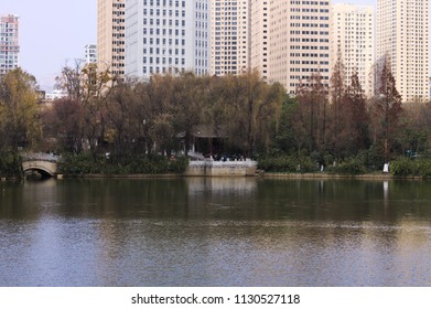 Skyscrapers view above Lotus Pond (Kunming, Yunnan, China)
