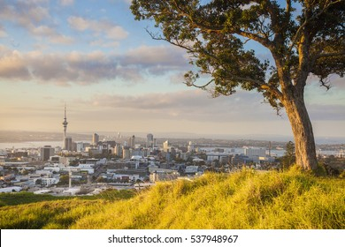 Skytower in Autumn at Auckland , New zealand