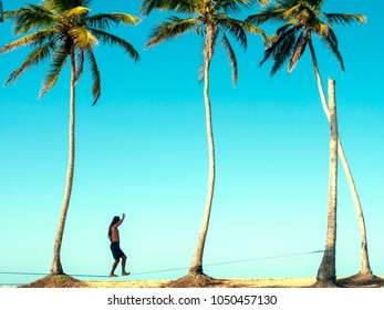 Slacklining, beach, palm tree, sea