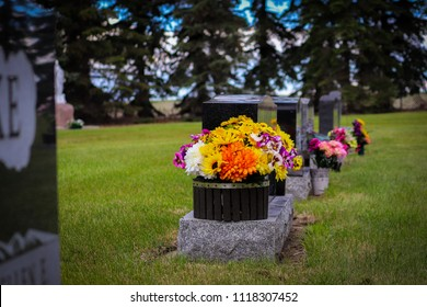 Slanted view of row of modern marble grave stones in green grass with flower planters