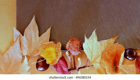 Slate autumn leaves