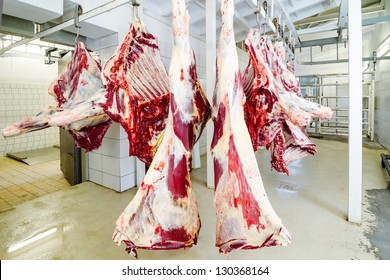 slaughterhouse cows, hanging on hooks in the cold half of cows