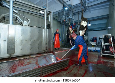 At the slaughterhouse. Worker washing a stunning pen gate from blood after slaughter. April 22, 2019. Kiev, Ukraine