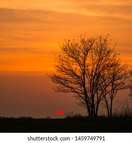 Slavonia region, Croatia, 08.11.2018. - Colorful sunset with trees and old hunting spot