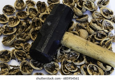 Sledgehammer laying on top of a spread of crushed walnuts on a white background