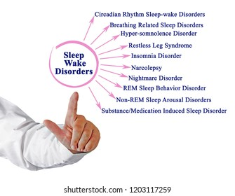 Sleep Wake Disorder