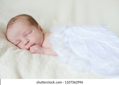 sleeping angelic newborn with the feather wings
