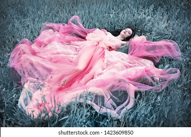 sleeping beauty young woman from fairy tale laying on silver grass