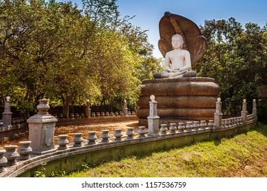 Sleeping Buddha statue close to Sigiraya, lion rock and pidurangala in Sri Lanka.