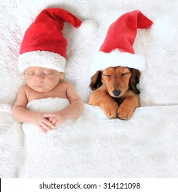 Sleeping Christmas baby and dachshund puppy wearing Santa hats.
