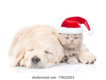 Sleeping puppy hugging a kitten in red christmas hat. isolated on white background