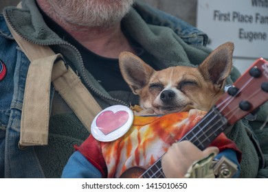 A Small Dog in His Arms Images, Stock Photos & Vectors