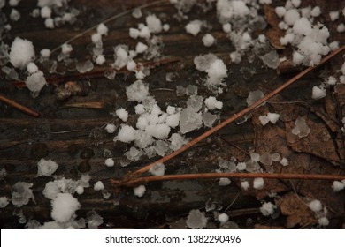 Sleet and ice on a wooden deck with dried pine needles.
