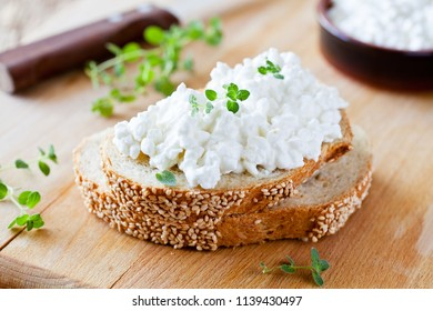 Slice of bread with fresh cottage cheese and oregano