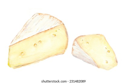 Slice of cheese brie. Water color