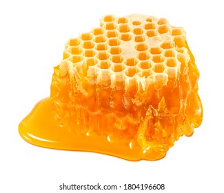 Slice of honeycomb isolated on white background. Bee honey element with clipping path