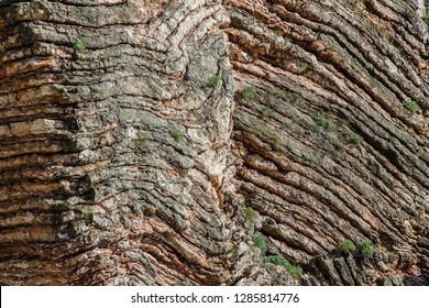 Slice lithospheric plate sticking to the surface of the earth. The stone layers are millions of years old.