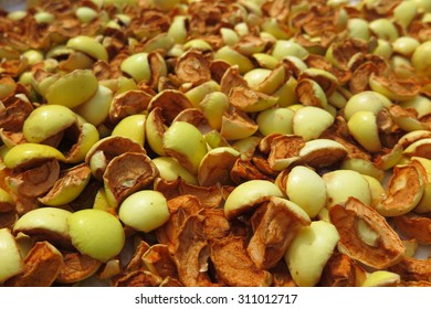 Sliced apples drying on a baking tray