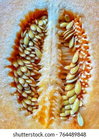 Sliced melon with seeds. Other names are cantaloupe, rock melon, Persian melon, honeydew.