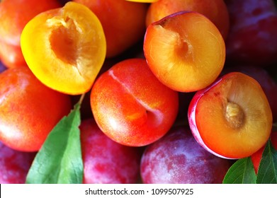 sliced plums, colorfoul background