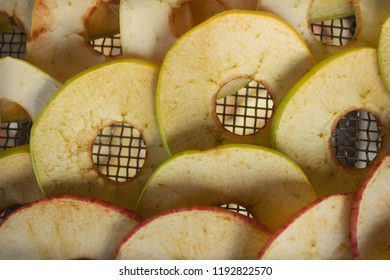 Slices of apples placedon the grid of the electric dryer