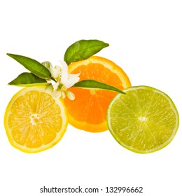slices citrus fruits - lemon, orange, and lime, decorated with green leaves and flowers isolated on white background