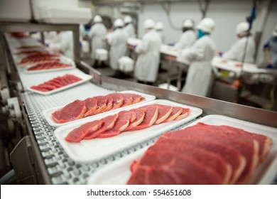 Slices of thin meat cutlets on a conveyor belt for packaging at industrial meat factory plant