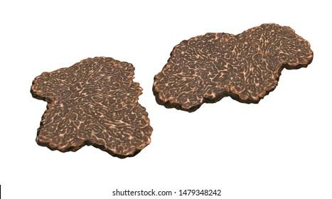 Slices of truffle mushroom on white background