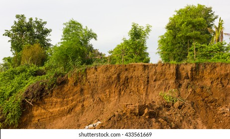 Slide soil erosion caused by groundwater into the river with a tree growing on the ground.
