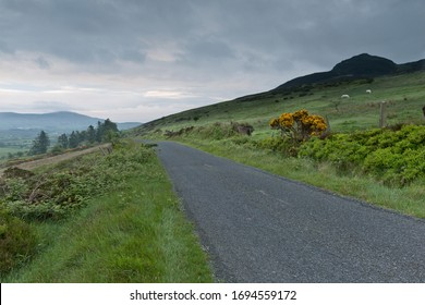 Slievenaglogh View with road, east. On the slope of Slievenaglogh peak (Irish: Sliabh na gCloch) on the road from Mullaghattin Townland to Riverstown.  The view includes Slievenaglogh peak.