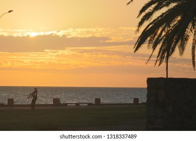Slightly cloudy sunset at the ocean with palm, coast architecture and father and son playing