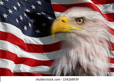 Slightly transparent North American Bald Eagle on American flag
