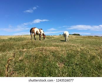 Sligo Ireland relaxing walks with a view