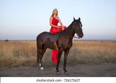 Slim blonde in a long red dress on horseback. Young woman looking into the distance enjoying an evening walk. Beautiful girl and stallion in field on blue sky background