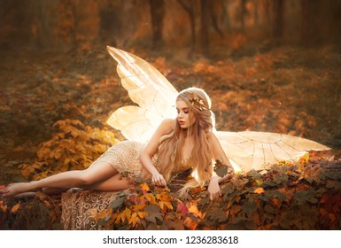 slim girl became a fairy, a model with blond long hair and golden wreath on leaves in the forest in a beige long dress with bare legs, has glowing wings behind her back, atmospheric autumn art photo.