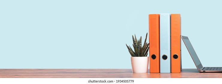 Slim laptop. Blue and orange document binders or lever arch file on an neat office shelf or desk. Cactus in a pot. Business concept banner. Copy space