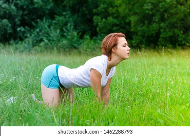 Slim sporty young yogini woman practicing yoga outdoor, doing cat asana. Yoga cow pose, Bitilasana pose. Girl in doggy style position on a green grass in the forest at a summer sunny day.