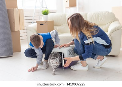 Slim young mother and little son launch their beautiful gray Scottish Fold cat into their new apartment in the living room. The concept of tradition with housewarming.