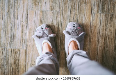 Slippers on women's legs cat face  gray. Feet female wearing cute house slippers made in the form of kawaii cat.