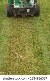 Slit seeding fescue lawn turf with power slice/slit seeder