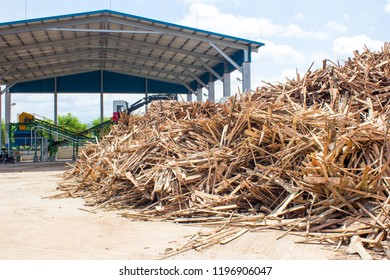 Slob wood at storage yard and wood chipper building