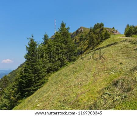 slope mt rigi switzerland summer rigi stock photo edit now