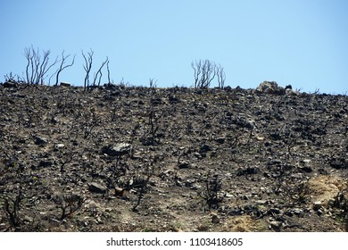 Slope of rock after disaster fire