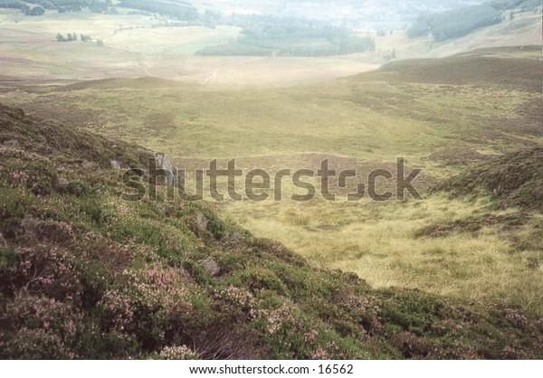 Slopes of Ben Vrackie in the Scottish Highlands