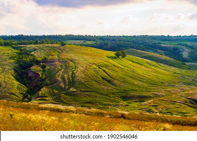 Slopes of hills summer landscape. Valley on the hillside with green and feather grass.